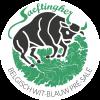 logo_saeftingher
